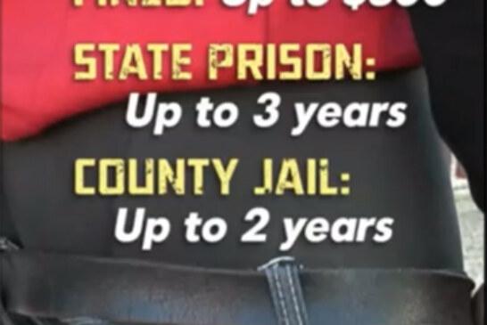 New campaign to Arrest & Jail Black & Brown boys for sagging pants