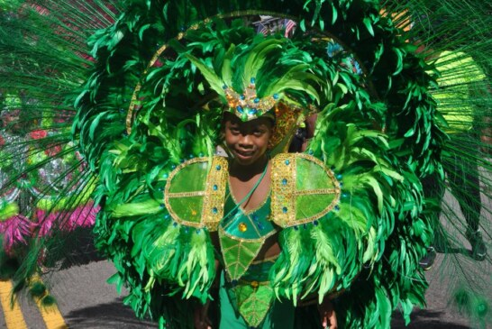 """Out & About """"Boston Carnival 2014"""""""