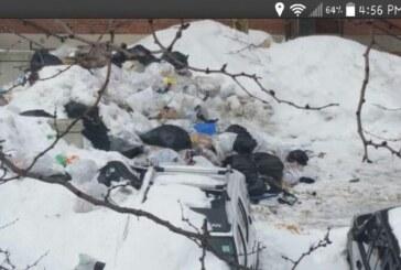 Bromley Heath: Trash Talking?
